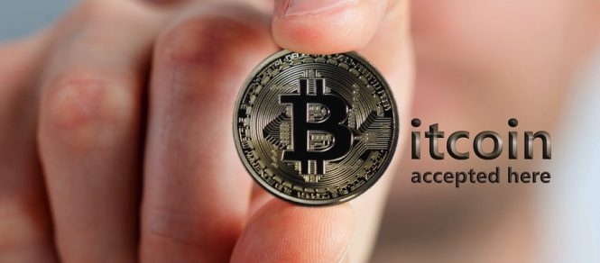 what is bitcoin wallet about